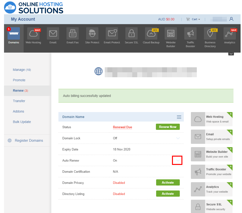 Online Hosting Solutions Domain Renewal Auto Renew On