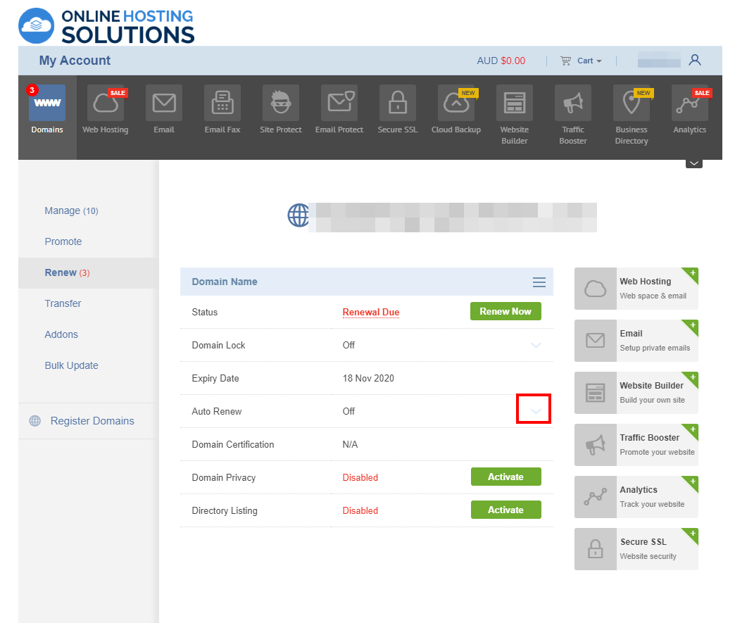 Online Hosting Solutions Domain Renewal Auto Renew
