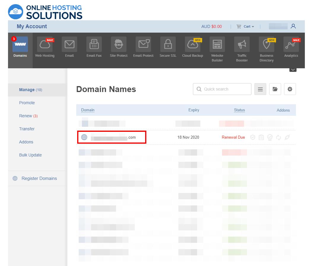 Online Hosting Solutions Domain Renewal Domain Name