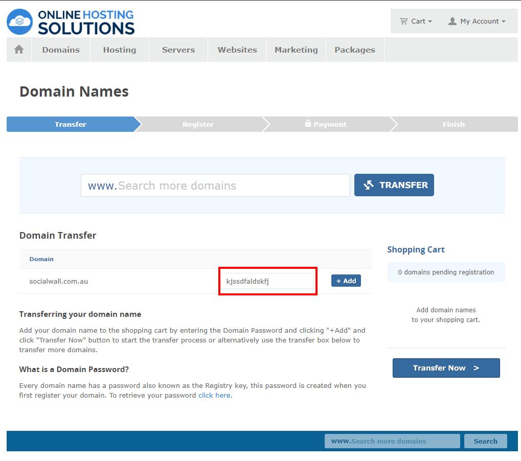 Online Hosting Solutions Domain Transfer Domain Password